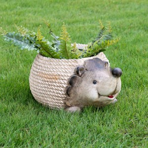 Hedgehog Rope Planter